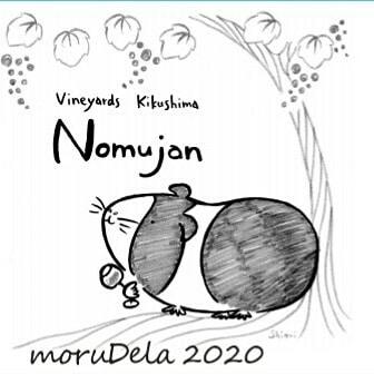 ワイン二種リリースしました。ご笑味下さい。・Nomujan moruDela (もるでら)2020  デラ100% 天然酵母・moRouge(もるーじゅ)2018   メルロー、カベルネソーヴィニヨン#もるもっとワイン#モルモットワイン#ヴィンヤードキクシマ